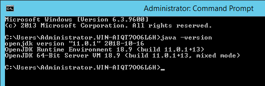 How to deploy OpenJDK on Windows - Knowledge Base - Global Site